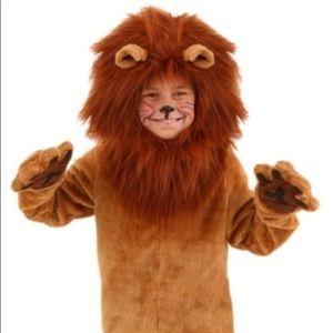 Other - Halloween Lion fur Costume